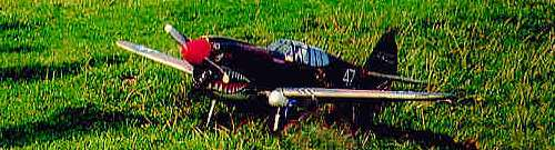 curtiss p40 kittykawk radio controlled scale model aircraft